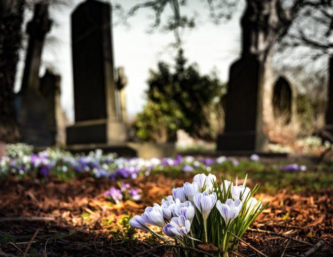 zakład pogrzebowy grudziądz